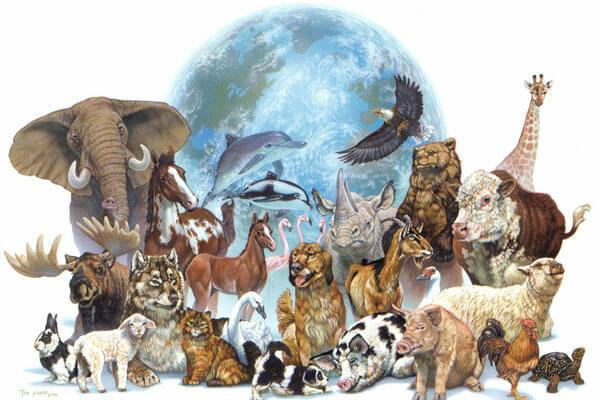 أكثر الحيوانات خطورة في العالم | أخطر الحيوانات