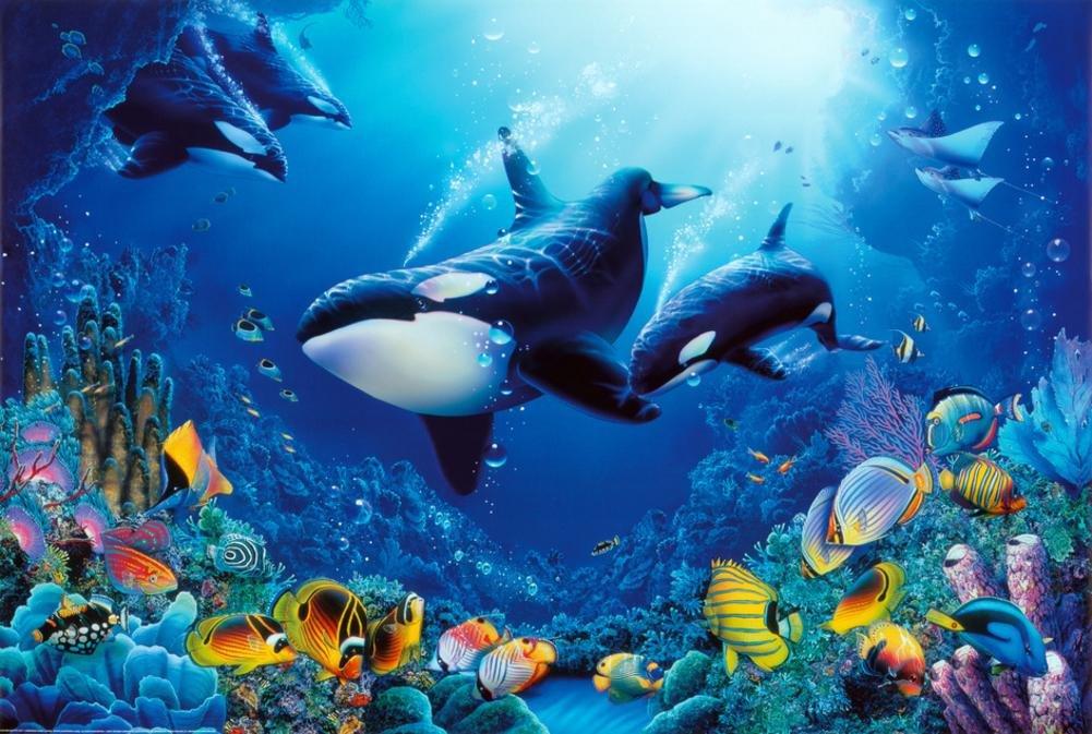 مخلوقات غريبة تعيش في أعماق البحار