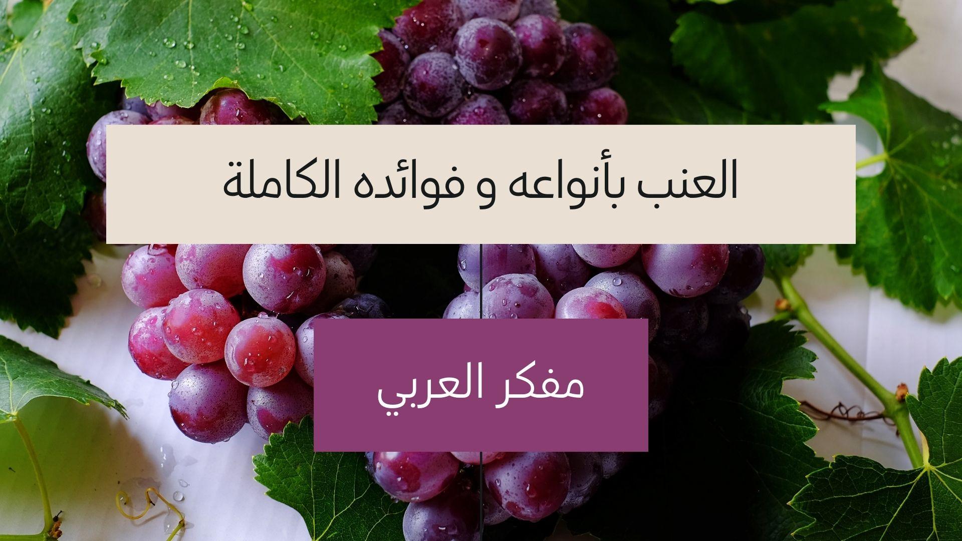 أنواع العنب و فوائده الكاملة