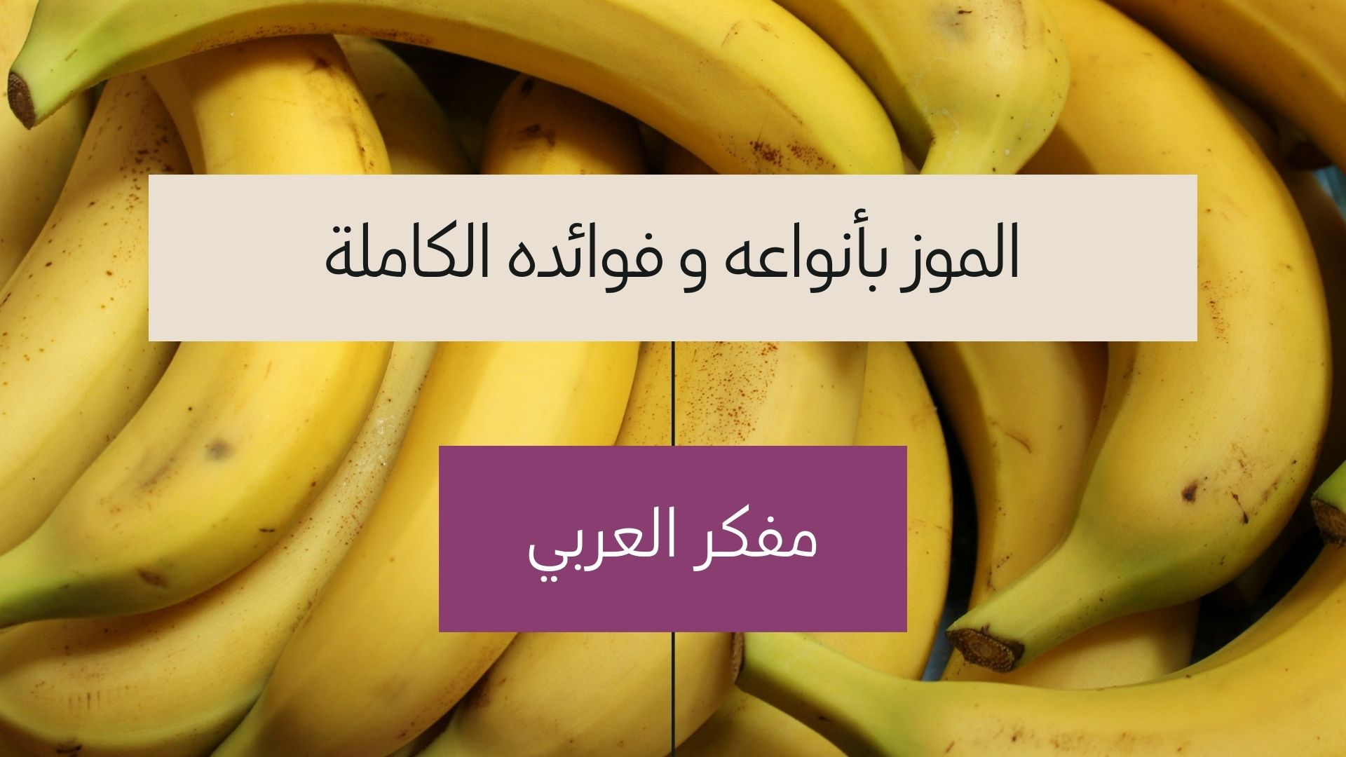 أنواع الموز و فوائده الكاملة