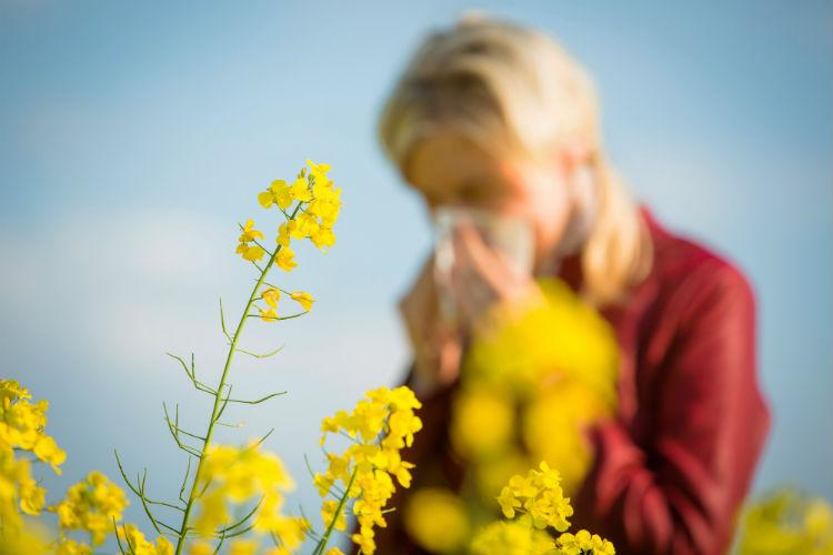 علاج حساسية الربيع