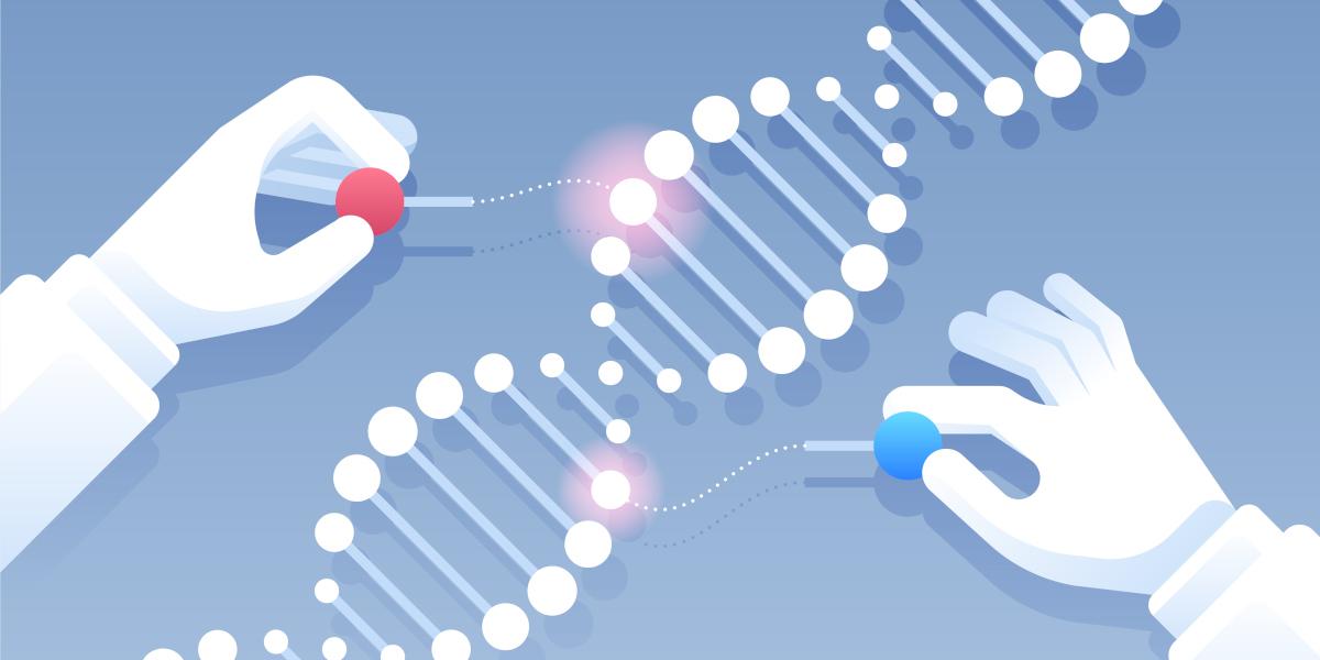 خوارزميات للفك شيفرة مرض السرطان و الزهايمر