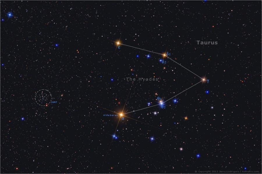 القلائص النجمية
