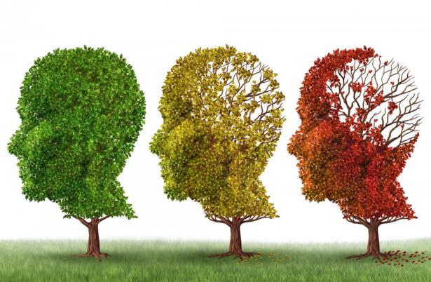 منع تطور مرض الزهايمر عن طريق تعديل الخلايا المخ البشري