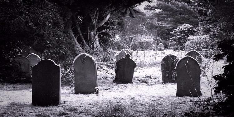 ماهو الموت ؟ و لماذا نموت ؟