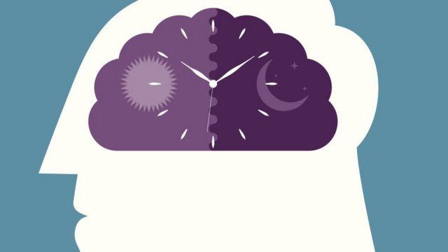 الساعة البيولوجية و تأثيرها على وظائف أعضاء الجسم و صحة الإنسان