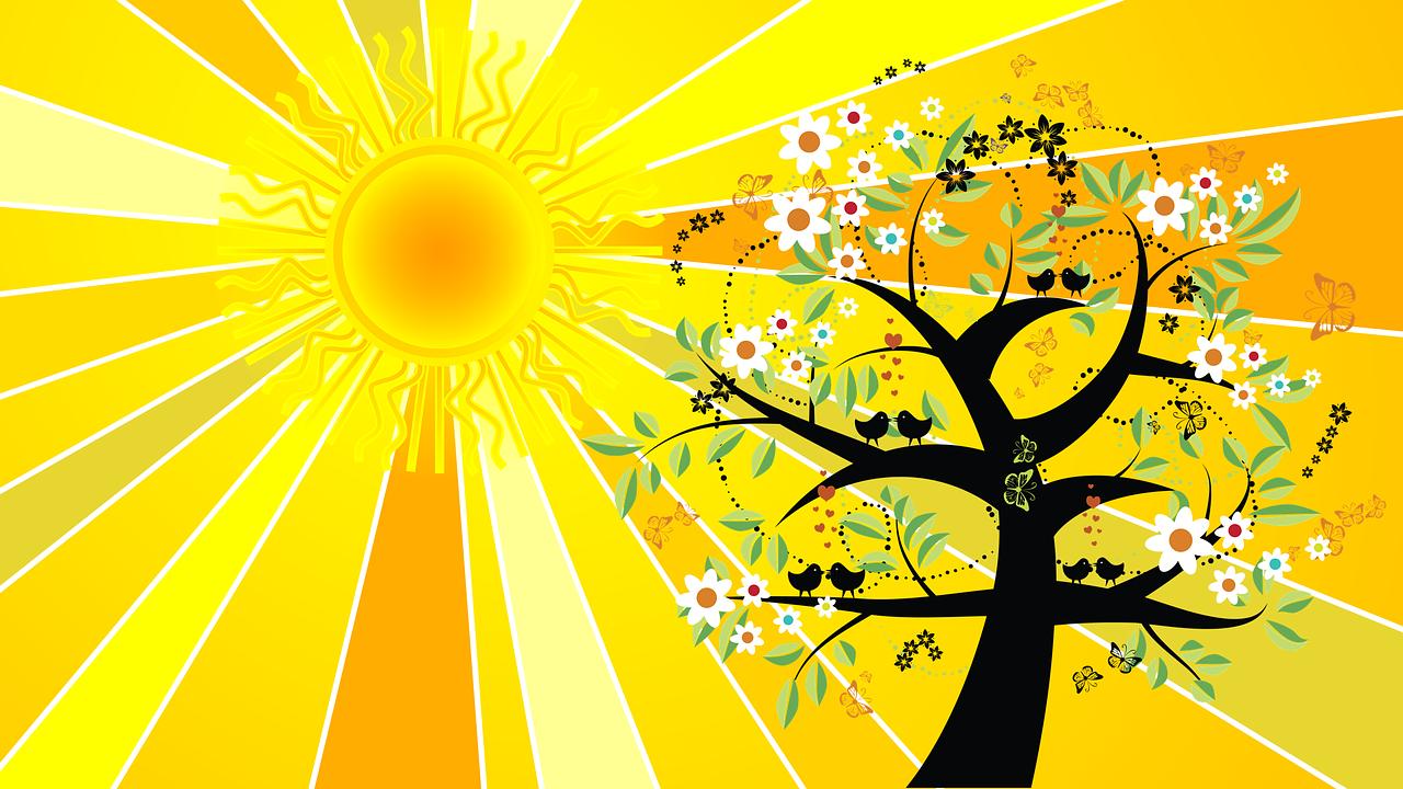 الانقلاب الصيفي و تأثيره على دورات النوم و دورات الاستيقاظ ل الكائنات الحية