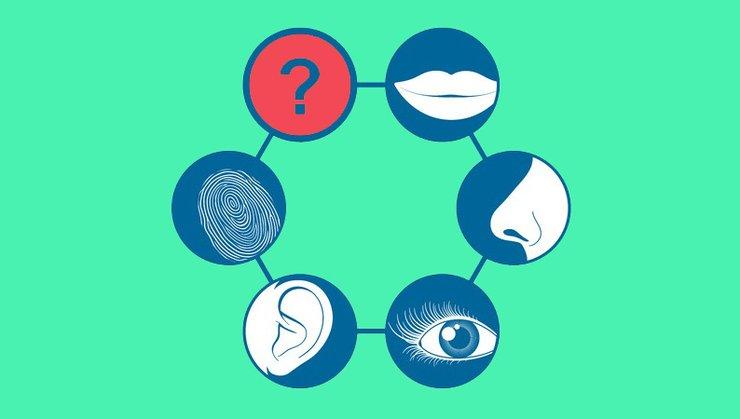 الحاسة السادسة علاقة العاطفة بالحاسة السادسة حواس الإنسان حدود الرؤية حاسة السمع حاسة اللمس