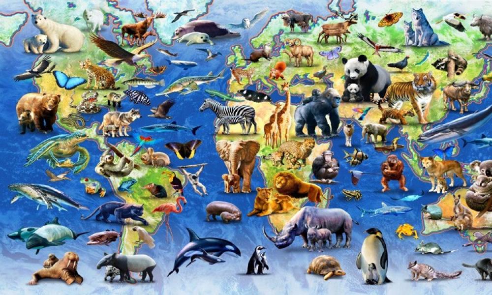 ماهي أطول الحيوانات عمراً على سطح الأرض ؟